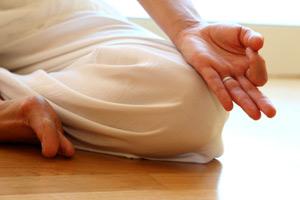 Yoga Modena Armonia Yoga
