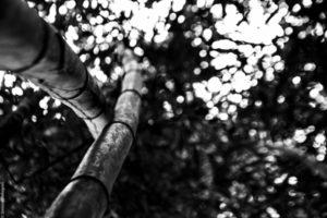 Yoga Modena Armonia Mostra Foto